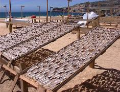 Fish drying in Nazare