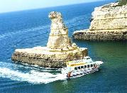 Seafaris in Algarve with a Portuguese tour Operator